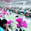 嘉麟杰2018年营收8.8亿,向唯品会和优衣库供货1.7个亿